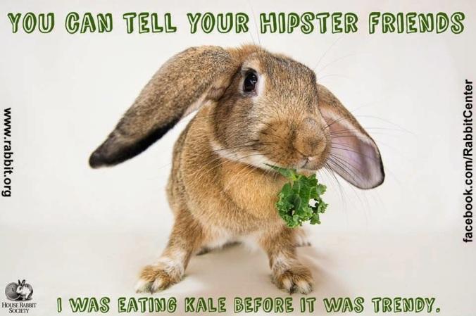 HRS Hipster bun