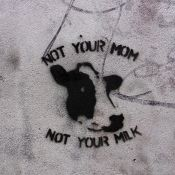 not your milk